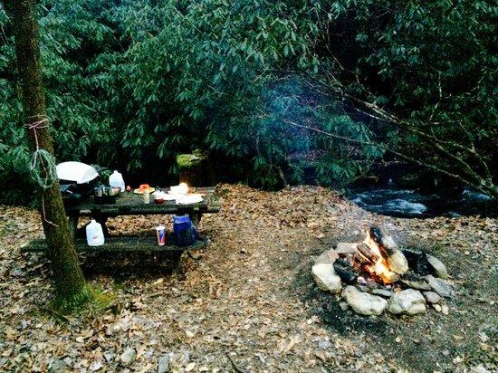 Enota Mountain Retreat : Our campsite.
