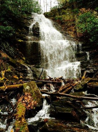 Enota Mountain Retreat : Upper Enota Falls