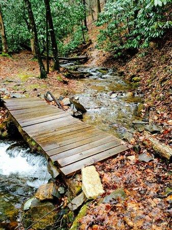 Enota Mountain Retreat : Leads up to a hike across the stream (a hike we didn't take).
