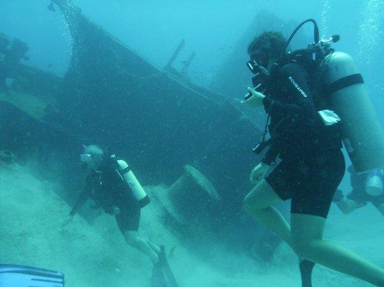 Ocean Explorers Dive Center : The Wreck dive
