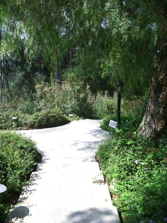 Ojai Retreat: walking paths among rooms