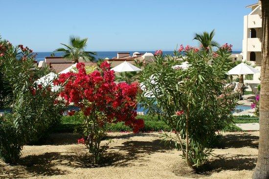 Solmar Resort: Beautiful gardens