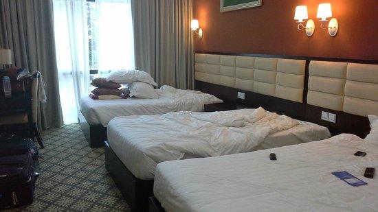 Hallmark Regency Hotel: Family room