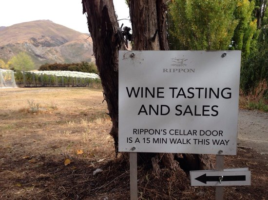 Rippon Vineyard: Access from lakeside walking track