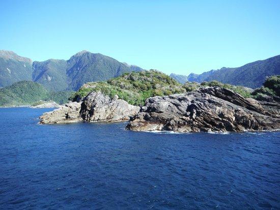 Doubtful Sound: Tasman Sea