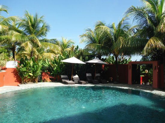 PinkCoco Bali : piscine