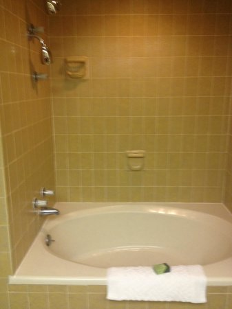 The Riverside Hotel: The huge bathtub!