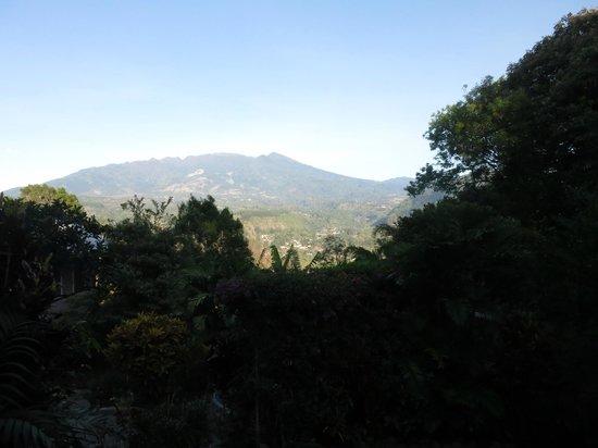 La Montana y el Valle Coffee Estate Inn: View from the Balcony
