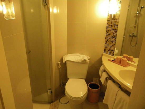 ibis Phuket Kata: Cupboard sized bathroom