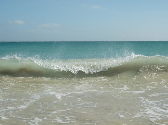 Cabo Pulmo Casas: Cabo Pulmo Beach