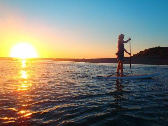 Raglan Paddleboarding: sunset paddle