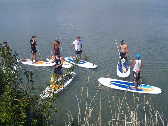 Raglan Paddleboarding: groups having fun