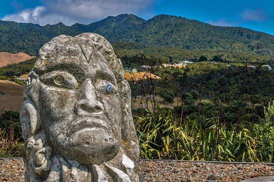 Raglan Scenic Tours: Mt Karioi