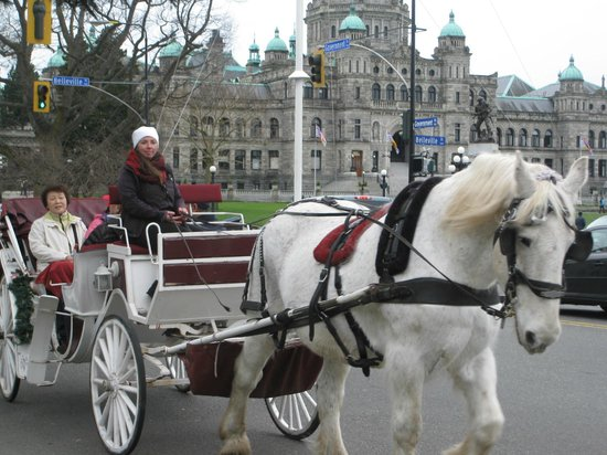Inner Harbour: horse drawn carriage in front of the BC Legislature Buildings