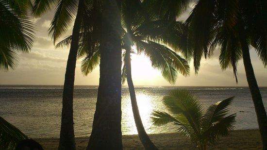 Sunhaven Beach Bungalows : Sunset