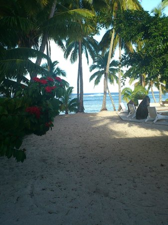 Sunhaven Beach Bungalows : View from room 9