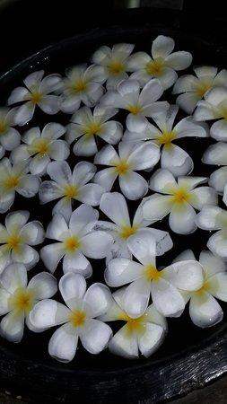 Bentota Beach by Cinnamon: По всему отелю эти цветы