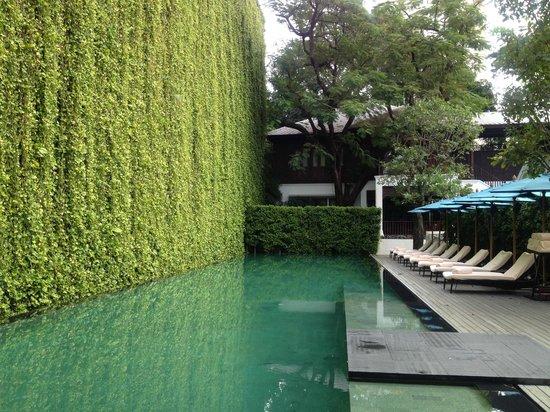 137 Pillars House Chiang Mai: pool