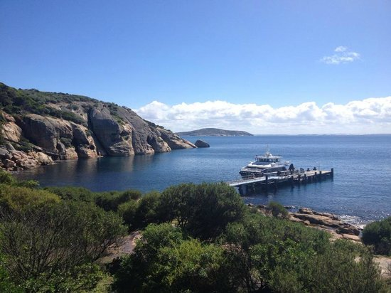 Esperance Island Cruises: Southern Niche tied up at Woody Island