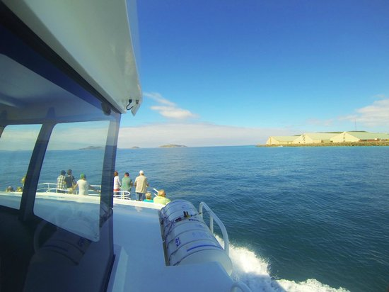 Esperance Island Cruises: View from the wheel house