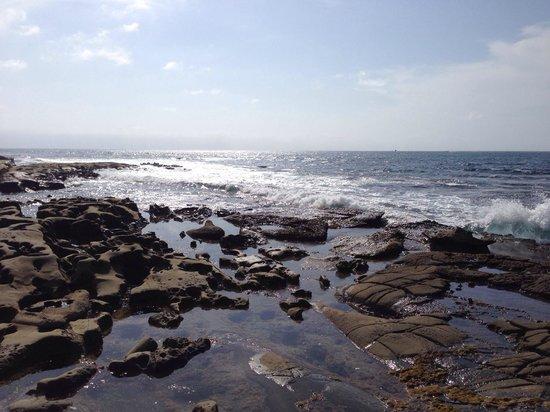La Jolla Cove: Breathtaking views