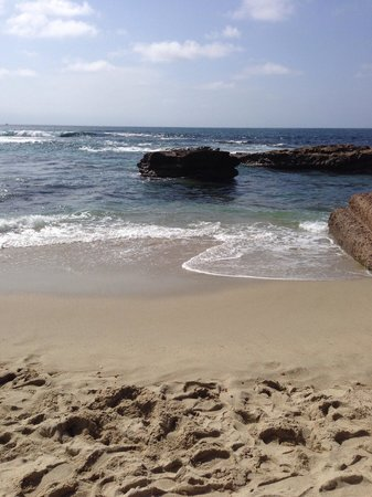 La Jolla Cove: Gorgeous
