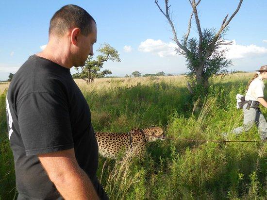 Lion and Safari Park: en promenade
