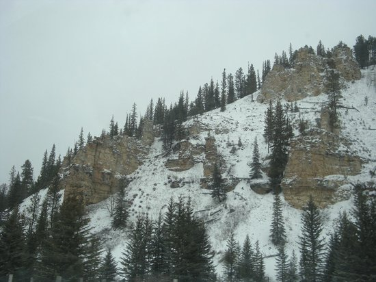 Black Hills National Forest: Awaiting the Spring Thaw !