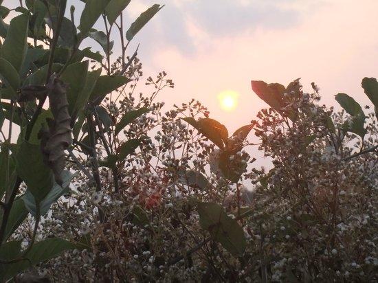 Mt Ampacao: slowly fading