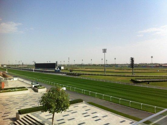 Hotels Near Meydan Racecourse Dubai