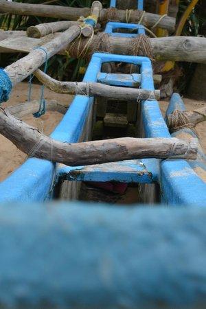 Coral Sanctuary : authentic boat