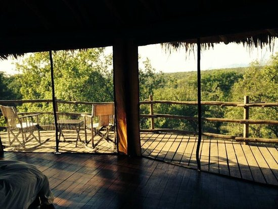 Tarangire Treetops: Tree hut Nr. 20, view