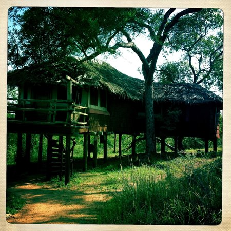 Tarangire Treetops: Tree hut Nr. 20, outside