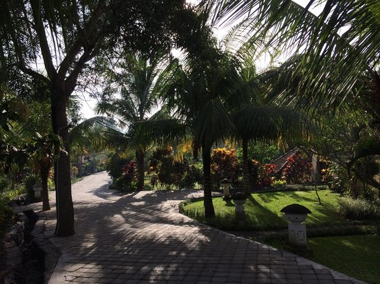 Bhanuswari Resort & Spa : Path to rooms/villas