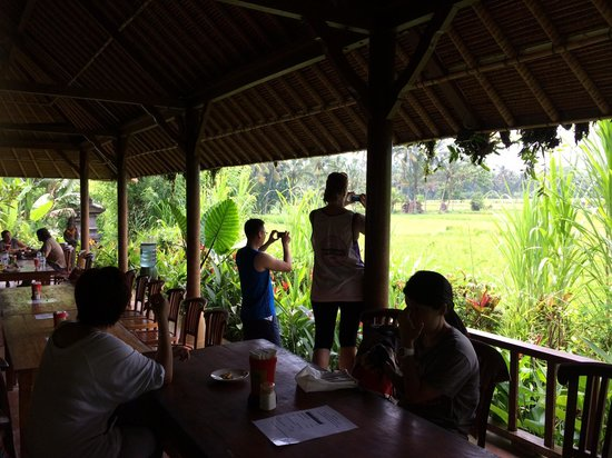 Bali Eco Cycling: View from their restaurant (lunch)