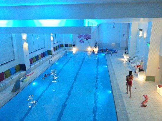 Orhideea Residence & Spa: indoor pool
