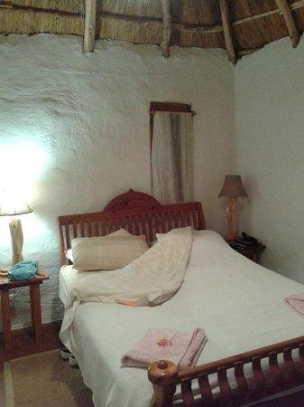 Antbear Lodge: Gästezimmer