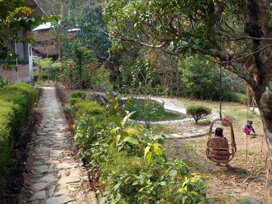 Tathagata Farm: The Pool