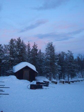 White Trail Adventures: wilderness cabin
