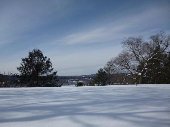 Vanderbilt Mansion National Historic Site : views