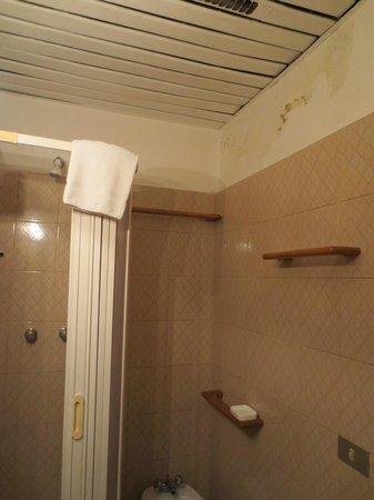 Bagno piccolo forte odore di muffa e controsoffitto con - Controsoffitto bagno ...