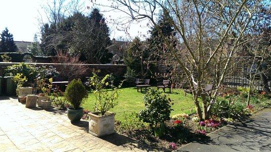 Victoria Park Lodge: Rear garden