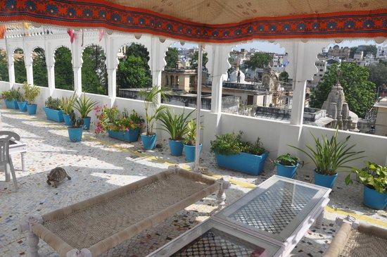 Panorama Guest House : Terrace