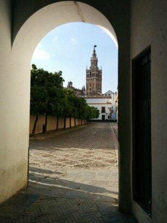 Catedral de Sevilla: Cattedrale da Alcazar