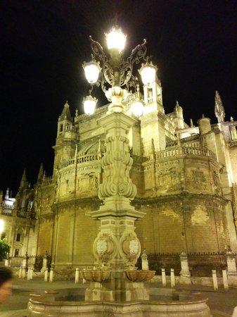 Catedral de Sevilla: Cattedrale di notte