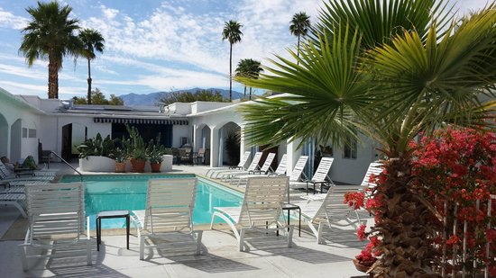 The Westcott : Daytime by the Pool