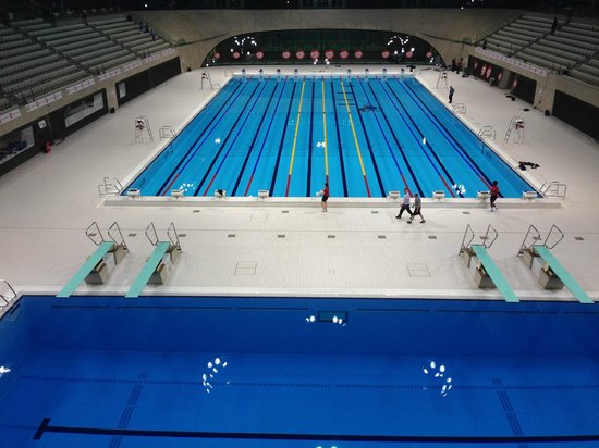 The Race Pool From The Top Of The Diving Board Picture
