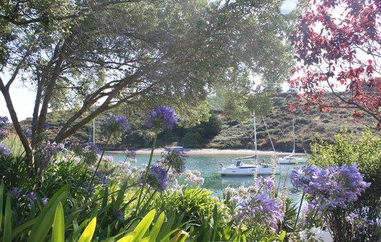Villa Pen Prad : le jardin qui longe la mer