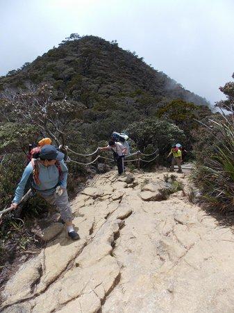 Mount Kinabalu: On our way ...