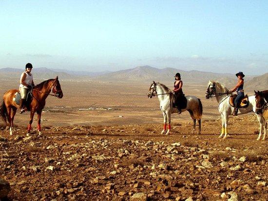 Paseos a Caballo (Crines del viento) en Triquivijate cerca de Caleta de Fuste
